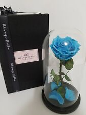 Preserved Real Blue Rose Disney Beauty And The Beast Glass Dome last 1-3 years