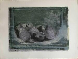 GIUSEPPE AJMONE litografia Melograni 1976  50x70 firmata numerata  pubblicata
