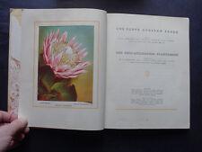 SOUTH AFRICAN:  FLORA, BIRDS, NATIONAL PARKS  Cigarette Cards / Natural History