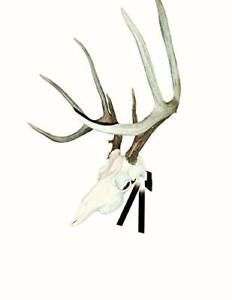 Mountain Mike's Reproductions Deer Positioner European Skull Wall Mount, Black