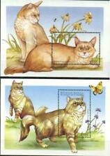 Comoro Stamp - Domestic Cats Stamp - NH