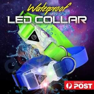 LED Dog Collar (100% Waterproof / 3 Light Modes / Super Durable) Light Up & Glow