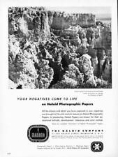 VINTAGE PRINT AD 1952 HALOID COMPANY PHOTOGRAPHIC PAPER