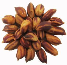 Organic Wild Jungle Peanut 5 seeds *Oldest peanut variety * Very tasty!* CombSH