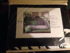 """Studio D Catz Euro Pillow Sham Black & White Zebra Leopard 26x26"""" Cotton Nip"""