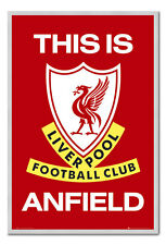 Liverpool FC Poster This Is Anfield Silver Framed Ready To Hang Frame Free P&P