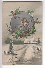CPA  FANTAISIE ANIMAL -  BONNE ANNEE OISEAU BIRD HOUX MAISON NEIGE 1910 ~B48