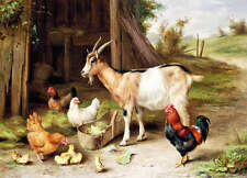 Goat, Rooster Chickens, Chicks Barn by Edgar Hunt vintage art