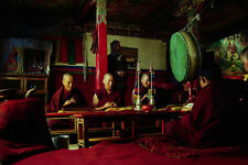 776063 Tibetan Monks In A Prayer Session Tibet A4 Photo Print