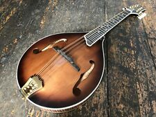 Ozark 2260D Deluxe Vintage A Style Mandolin With Gig Bag RRP 799.99