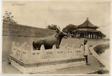 BOY WITH GOLDEN OX STATUE, BEIJING SUMMER PALACE PHOTO