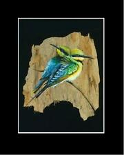 RAINBOW BEE EATER -Print - SIGNED by Artist - Unique Australiana