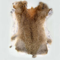 Rabbit Skin Natural Tanned Real Fur for Clothing, Mittens, Bushcraft, Fly Lures