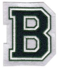 "BINGHAMTON BEARCATS NCAA COLLEGE 3 1/8"" CHENILLE LETTER B TEAM PATCH"