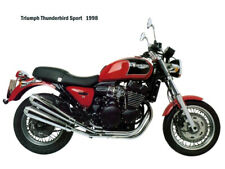 Motorcycle Canvas Picture Triumph Thunderbird Sport 1998 Canvas 16x12 inch