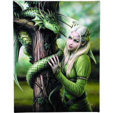 """Kindred Spirits Canvas Wall Plaque by Anne Stokes 10"""" x 7"""" Dragon"""