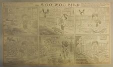 The Woo Woo Bird Sunday by H.C. Greening from 1909 Half Page Size (Very Funny!)