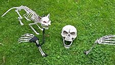 Halloween Party/Prop Lawn Skeleton Bones/Skull/Ground Stakes+ cat red eyes
