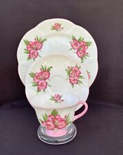 Scarce Shelley FOOTED DAINTY With Pink OLEANDER Tea Cup Saucer Plate TRIO