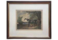 19th-Century Aquatint Etching of Penelope Race Horse Property of Duke of Grafton