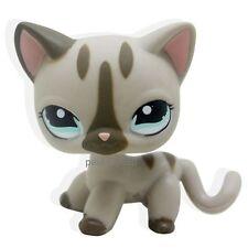Littlest Pet Shop Gray Cat kitty Short hair Tan With Aqua Blue Eyes LPS TOY #468