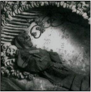 Sopor Aeternus & The Ensemble of Shadows - Ich toete mich jedesmal aufs Neue, do