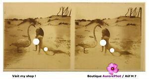 NU, FEMME, ÉROTISME, VUE STÉRÉO SUR VERRE 6 X 13 cm, 1910, NUDE WOMEN LADY -M7