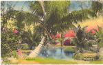 savannahsmiles4u Vintage Postcards