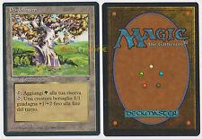 MTG MAGIC - Pendelhaven - Italian Leggende Legends 1995 - MINT