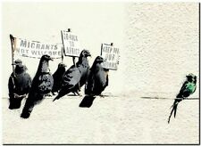 "BANKSY STREET ART CANVAS PRINT Anti Immigration Feral Pigeons 8""X 10"" poster"
