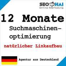 12 Monate Suchmaschinenoptimierung manuell Linkaufbau Backlinks Website SEO