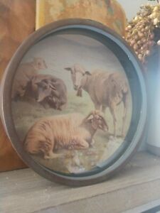 """New Farmhouse Sheep PICTURE Round Frame 8"""" Vintage Look"""