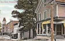 Main Street & Drug Store in Philadelphia NY 1907