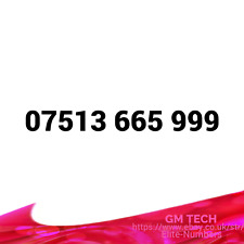 07513 665 999 EASY MOBILE NUMBER PAY AS YOU GO SIM CARD UK GOLD PLATINUM VIP