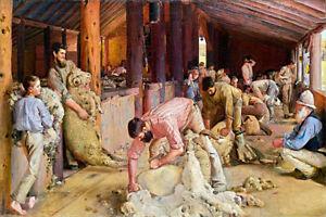 Canvas Prints.  Shearing The Rams - Tom Roberts - Framed & Ready to Hang