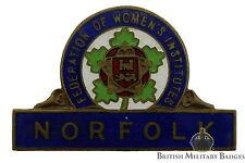 Federación de mujeres Institute Norfolk Branch Insignia Esmalte - WI