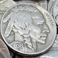 Buffalo Nickel 5 Cent Coin  Buy 3 Get 1 Free