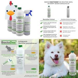 Bactodes Animal   Tier-Geruchsentferner   Effektiver Geruchskiller   Katzenurin