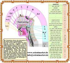 Tadchwid Al-Quran Koran Deutsch arabisch Umschrift Teil 29 & 30 Transliteration