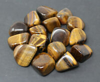 1 lb Bulk Lot Gold Tiger Eye Tumbled Stone: (Tumble Crystal Healing Reiki)