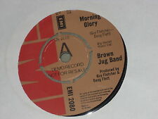 "Brown Jug Band:  Morning Glory   DEMO  7""  UNPLAYED EX SHOP"
