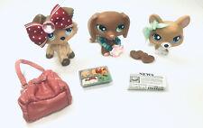 LPS Littlest Pet Shop Brown Dachshund Tan Corgi Collie Set w/Accessories!!