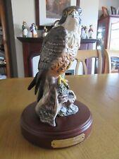 Royal Doulton Limited Edition Peregrine Falcon HN 3541
