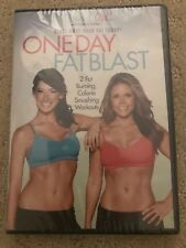 Tone It Up! One Day Fat Blast with Karena & Katrina - Workout DVD New Sealed