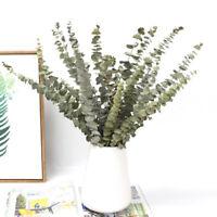Natural Dried Flowers Eucalyptus Leaf Table Fake Plant DIY Wedding Decor