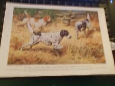 Walter A. Weber English Setter bookplate 1947 National Geographic Magazine