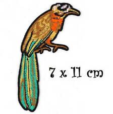 ÉCUSSON PATCH - Oiseau Perroquet ** 7 x 11 cm ** Applique brodée thermocollante