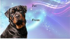 Rottweiler Dog Self Adhesive Gift Labels (42)  - by Starprint