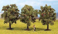 Árboles von Noch N, Z (25513): 3 árboles de manzano