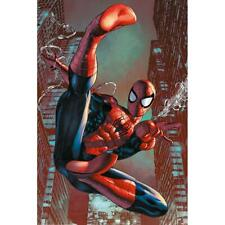 Spider-Man Web Sling Poster